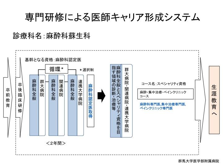 H26医師キャリア形成システム 麻酔
