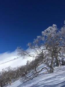 2017スキーツアー